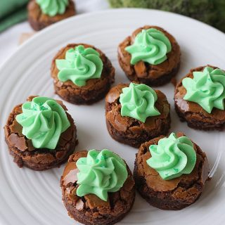 Two Bite Chocolate Mint Brownies