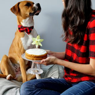 Homemade Dog Cake & a Giveaway!
